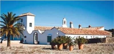 El mejor vino tinto de Andalucía